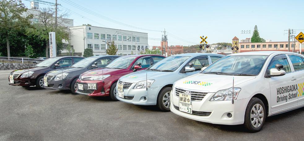 星が丘自動車学校の多くの種類の教習車が停められている写真
